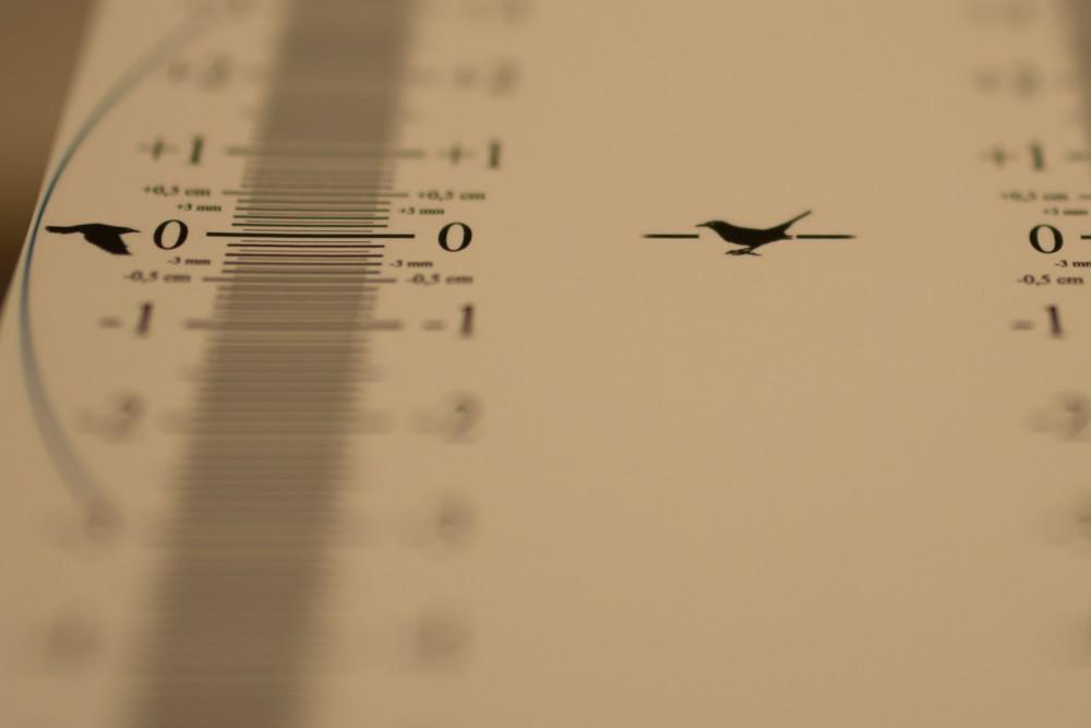 fokusprobleme-sigma-35mm-1-4-2