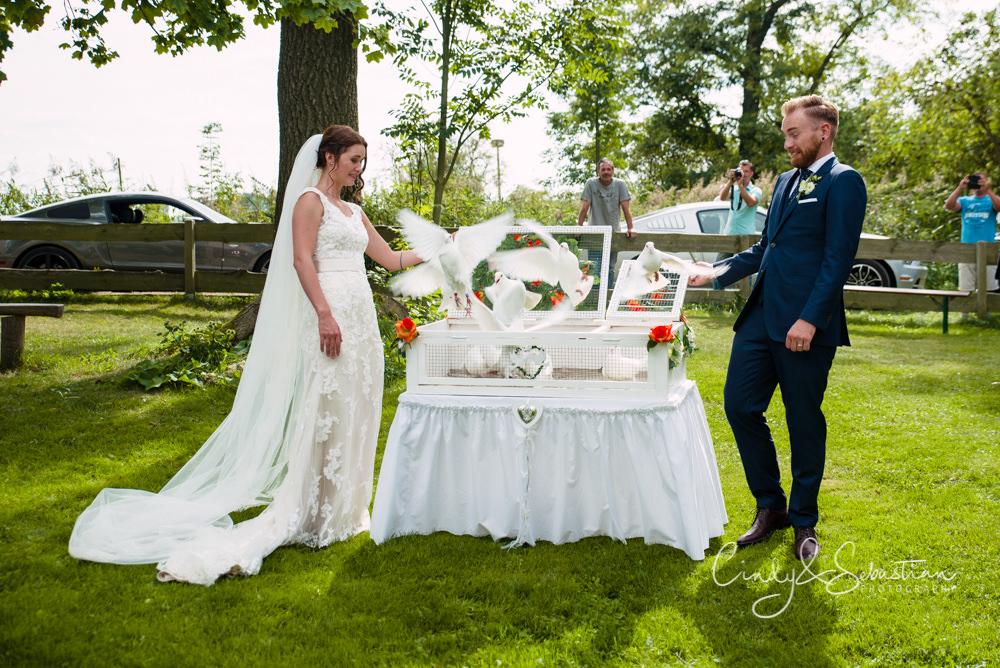 Hochzeitstauben aus Brandenburg