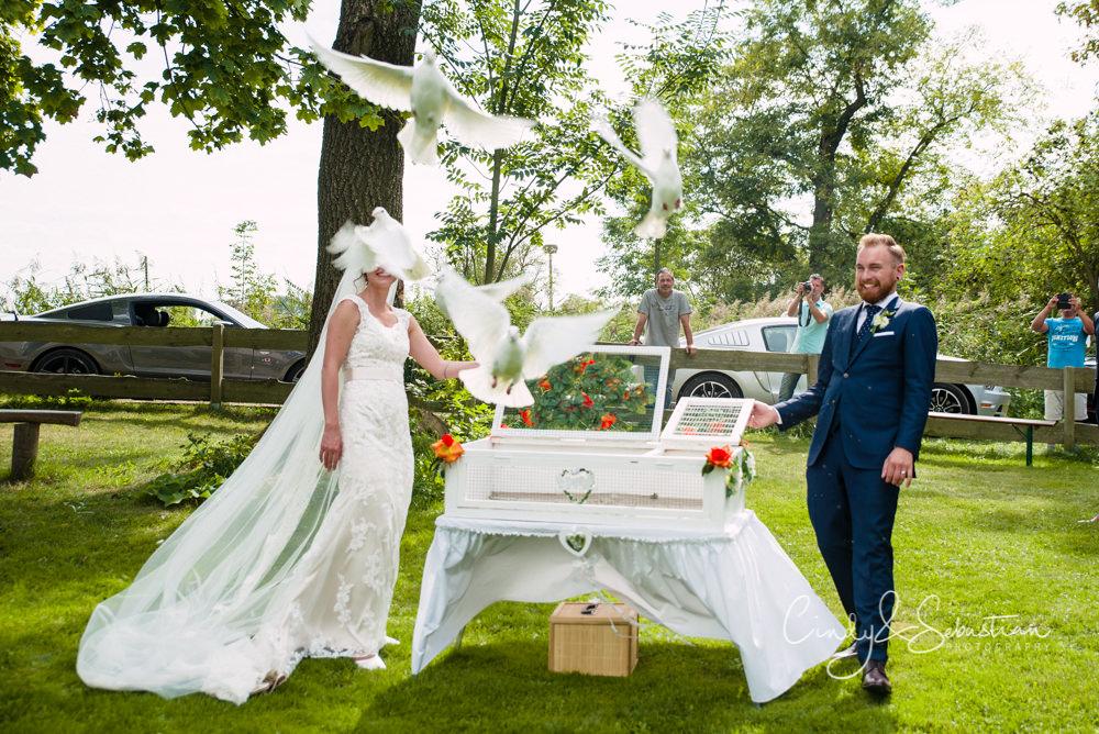 Hochzeitstauben Potsdam